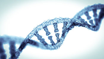 Mystery Gene Uncovered In Autism >> Is Autism Genetic